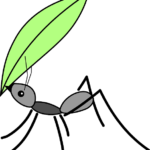 【所得税】害虫被害に雑損控除を使う