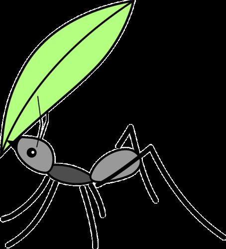 葉をくわえるアリ