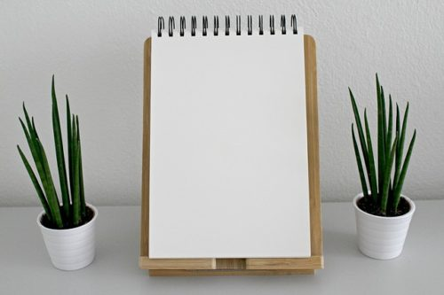 白紙のノートと観葉植物