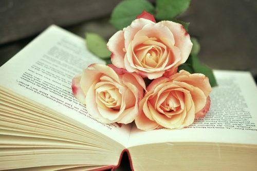 バラの載った開いた本